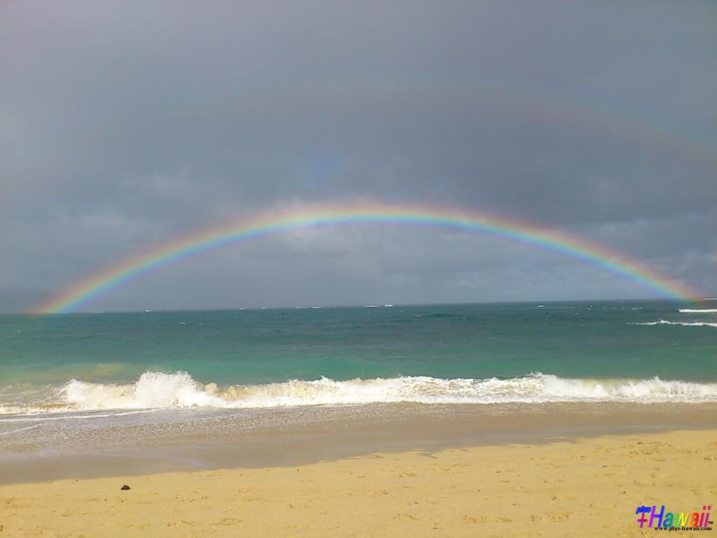 ハワイの壁紙 In The Paradise World 風景 パーフェクト ダブル
