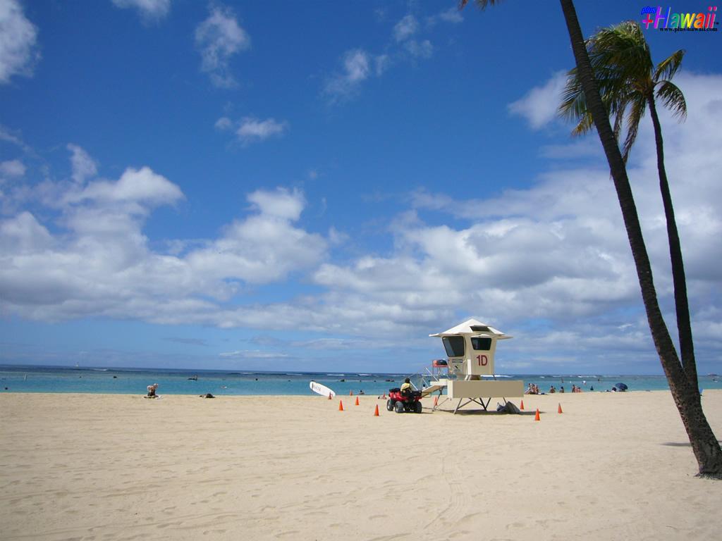 ハワイの壁紙 In The Paradise World 風景 アラモアナビーチ