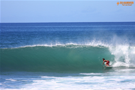 On The Surf World �i�T�[�t�B���j